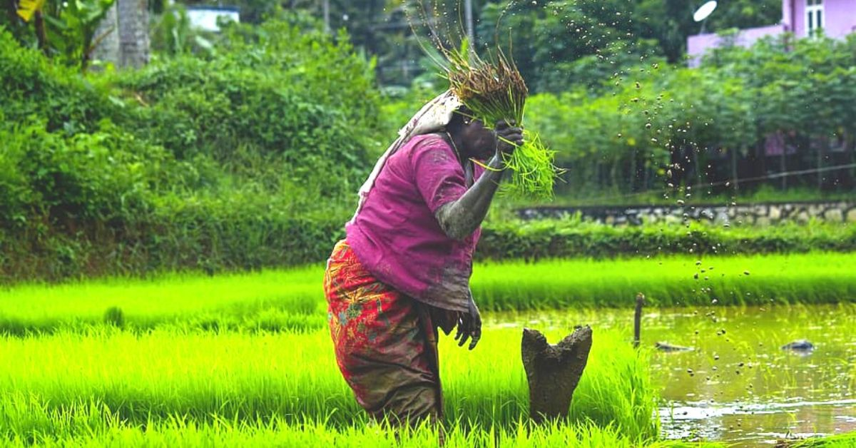 Can Centre's Agriculture Reforms Positively Impact Farmers? Experts Have Their Say