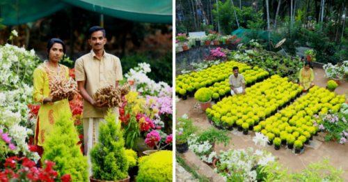 Kerala Couple Grow 34 Varieties Of Bougainvillaea Earn Rs 2 Lakh Month