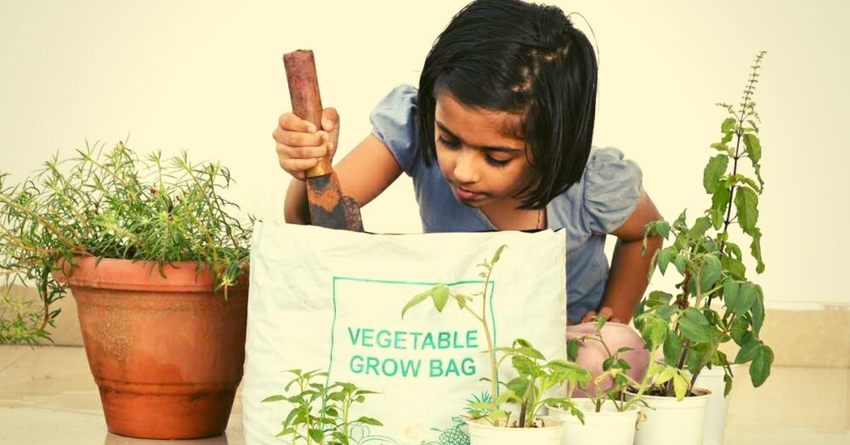 5 Online Places to Buy Quality Organic Seeds For Your Home Garden