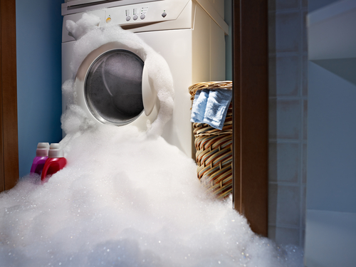 Fifty Shades of Greywater: How You Can Collect and Reuse Wastewater from your Washing Machine