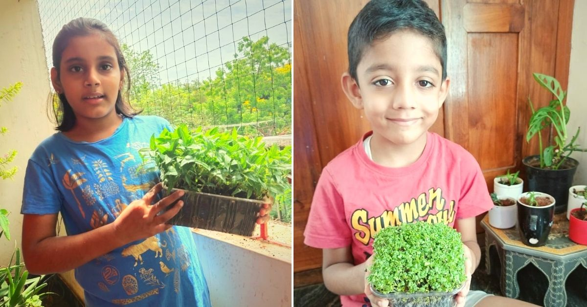 Over 2000 Children Turn into Microgreens Farmers During the COVID-19 Lockdown