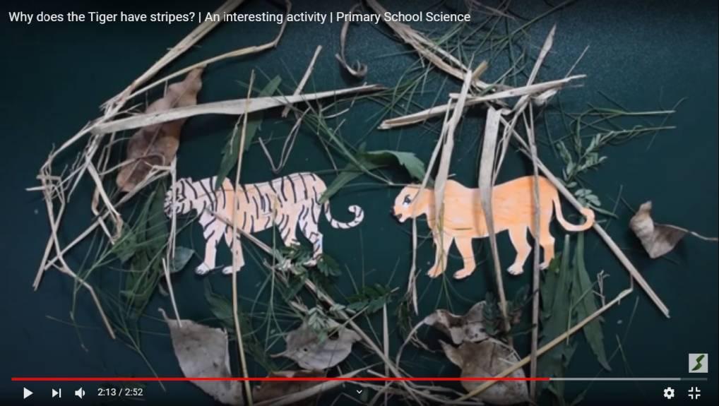 Canal do IITian Duo no YouTube torna o aprendizado divertido para crianças tribais 6