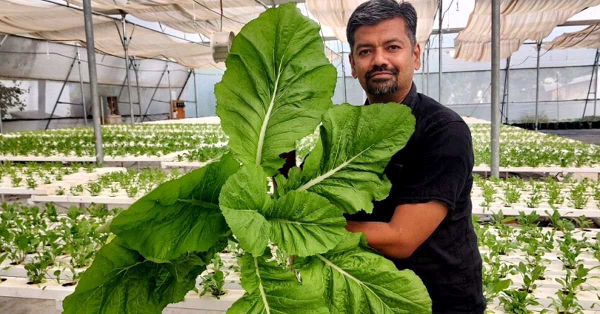 Man Quits Job to Start Gardening Business, Helps 5000 Setup Gardens from Scratch