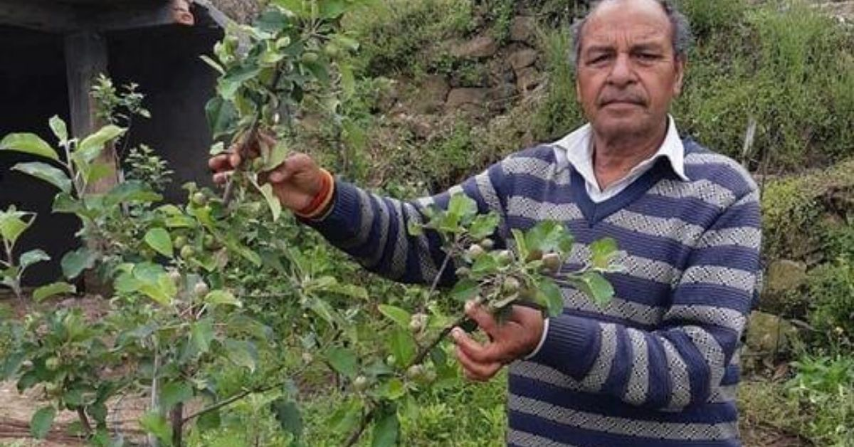 Himachal Farmer's National Award-Winning Apples Can Grow Anywhere in India