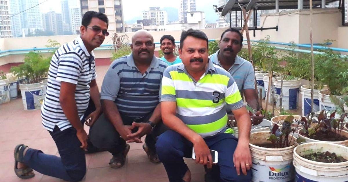 Thane Society Grows Organic Veggies on Terrace, Saves Lakhs Using Solar Power