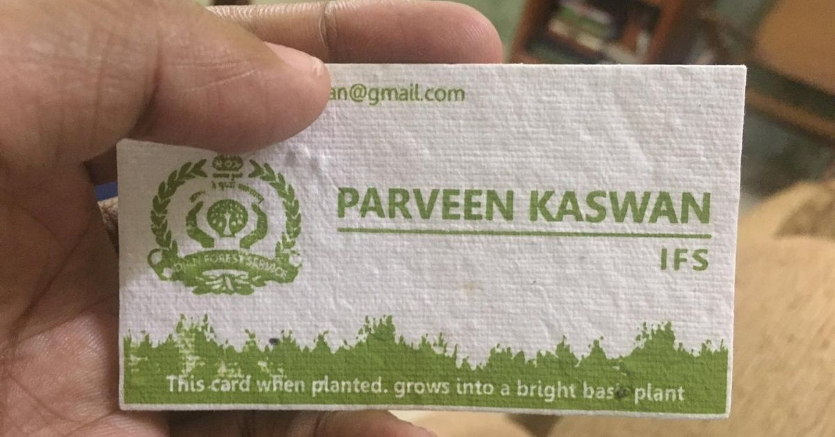 IFS Officer's Plantable Visiting Cards Go Viral, Here's How You Can Get Your Own