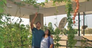 Bengaluru Couple With 250 Plants Shares How to Grow Gourds & Beans