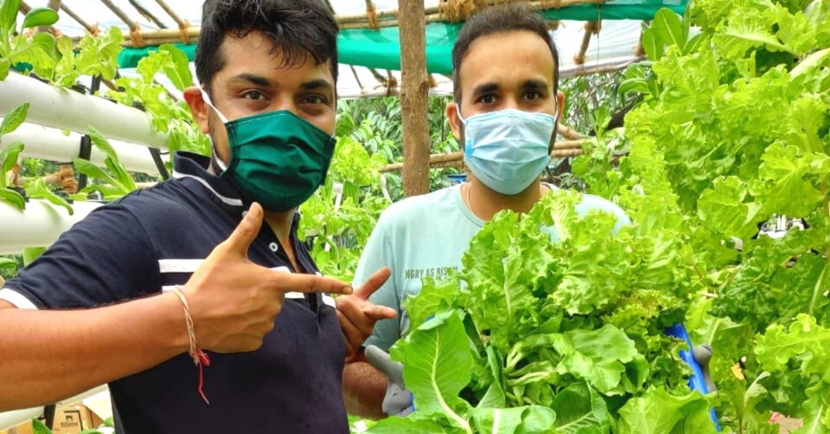 Grounded Mumbai Pilots Use Hydroponics to Grow & Deliver Toxin-Free Veggies