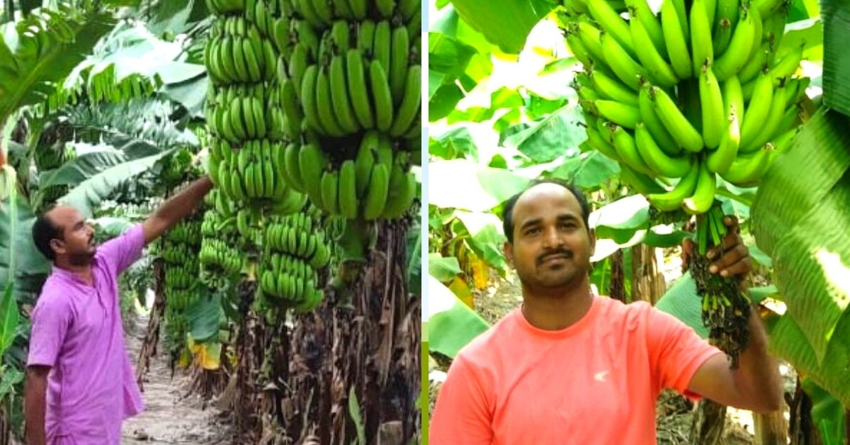 UP School Teacher Earns Lakhs From Part-Time Farming, Inspires 350 Other Farmers