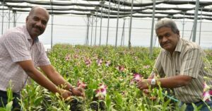 Telangana farmer growing orchids