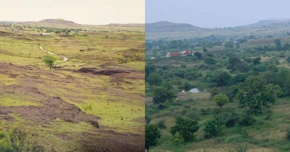 Maharashtra Govt Officer Finds 16,000 Trees To Turn Barren Land Green Again