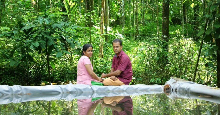 Kerala Photographer Raises 80 Types of Veggies, Fishes & Beehives in His Backyard