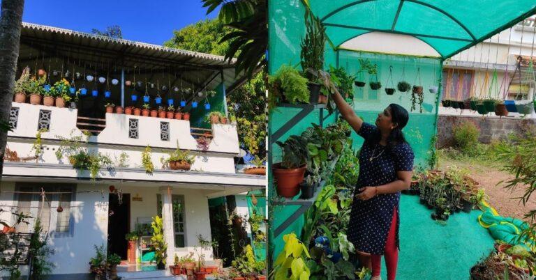 Kerala Homemaker Grows 100s of Plants on Terrace, Earns Rs 30000 Per Month
