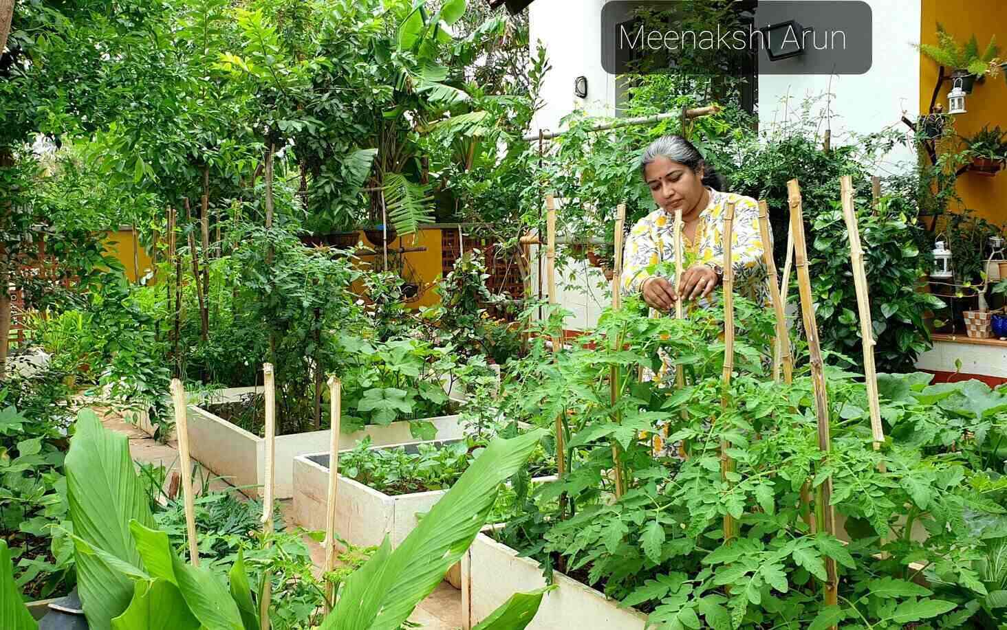 Organic Gardens in Bangalore